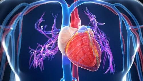 Инфаркт: симптомы, лечение и профилактика сердечного приступа