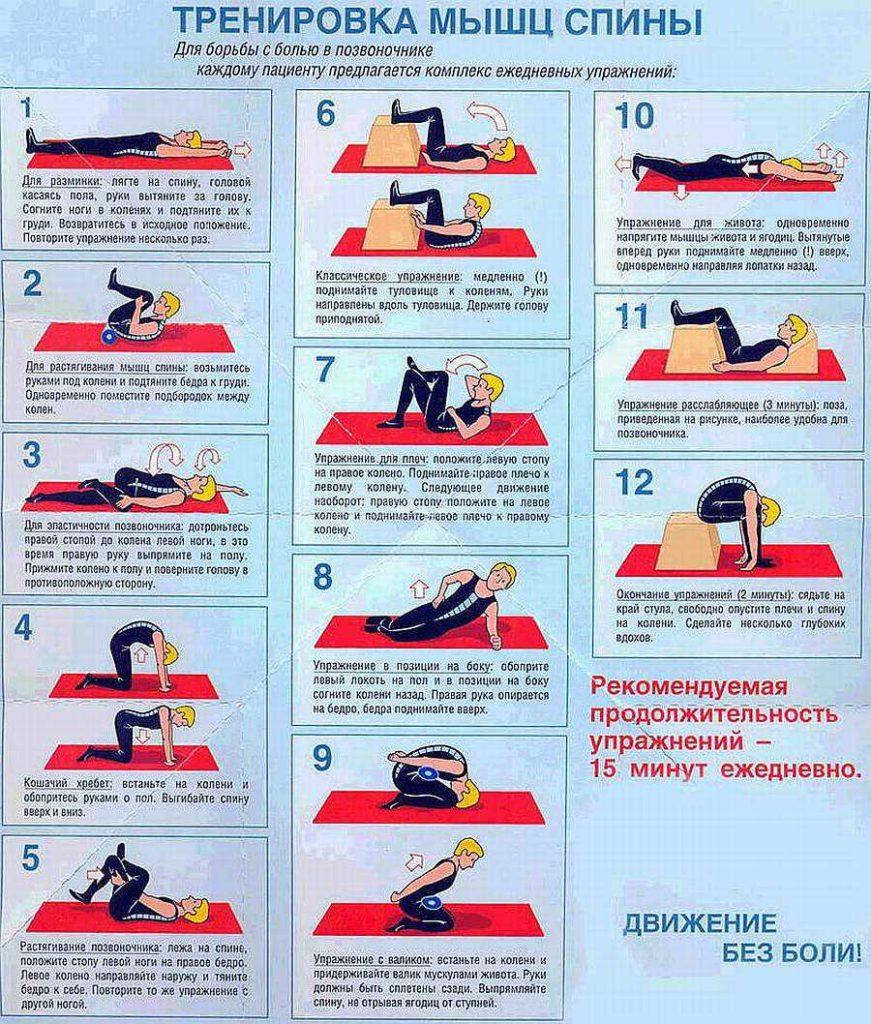 тренировка мышц спины при остеохондрозе