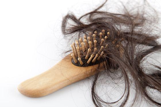 Образ жизни напрямую влияет на состояние волос