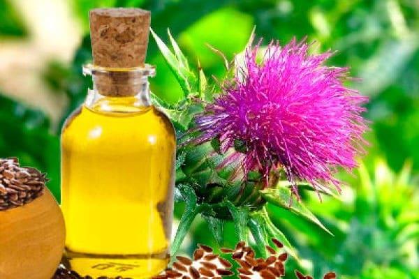 Расторопша полезные свойства лекарство для печени