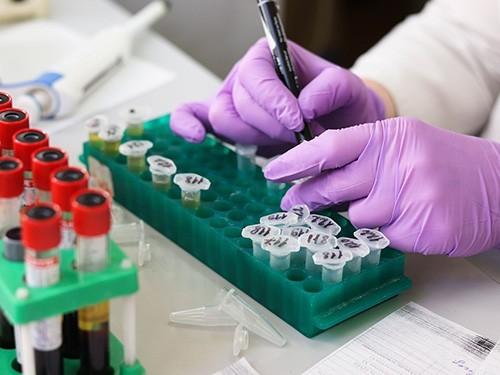 Папилломавирус, Helicobacter и кошачья двуустка: инфекции, причастные к развитию рака