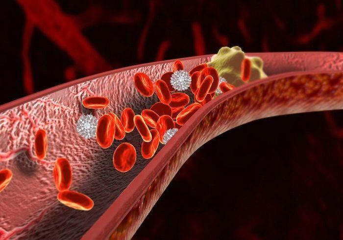 продукты для предотвращения возникновения тромбов