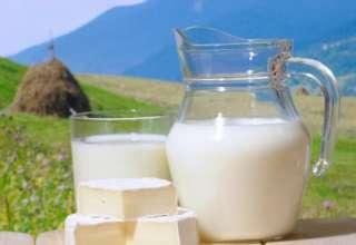 Отказ от молочных продуктов опасен