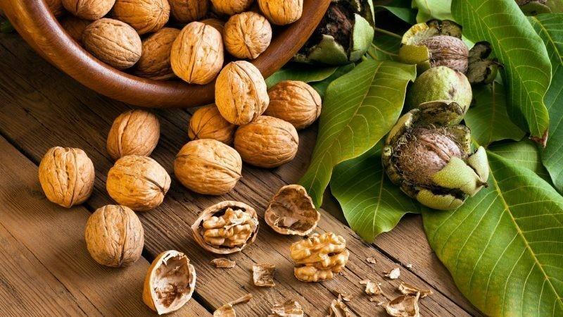 Самые полезные орехи и что они лечат