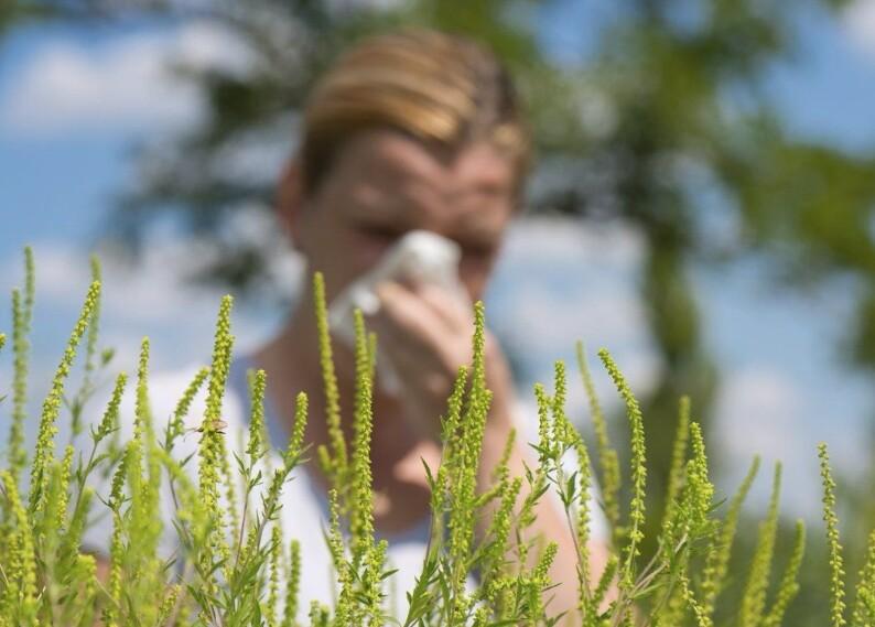 Какие виды аллергии бывают